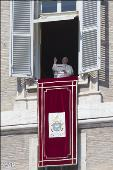 PAPA FRANCESCO: ALL'ANGELUS